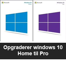 windows10hometilpro.png